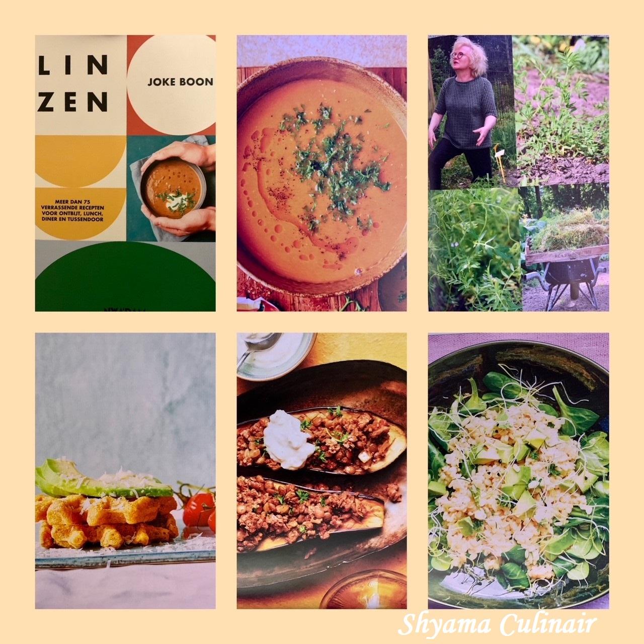 Linzen, Vegan
